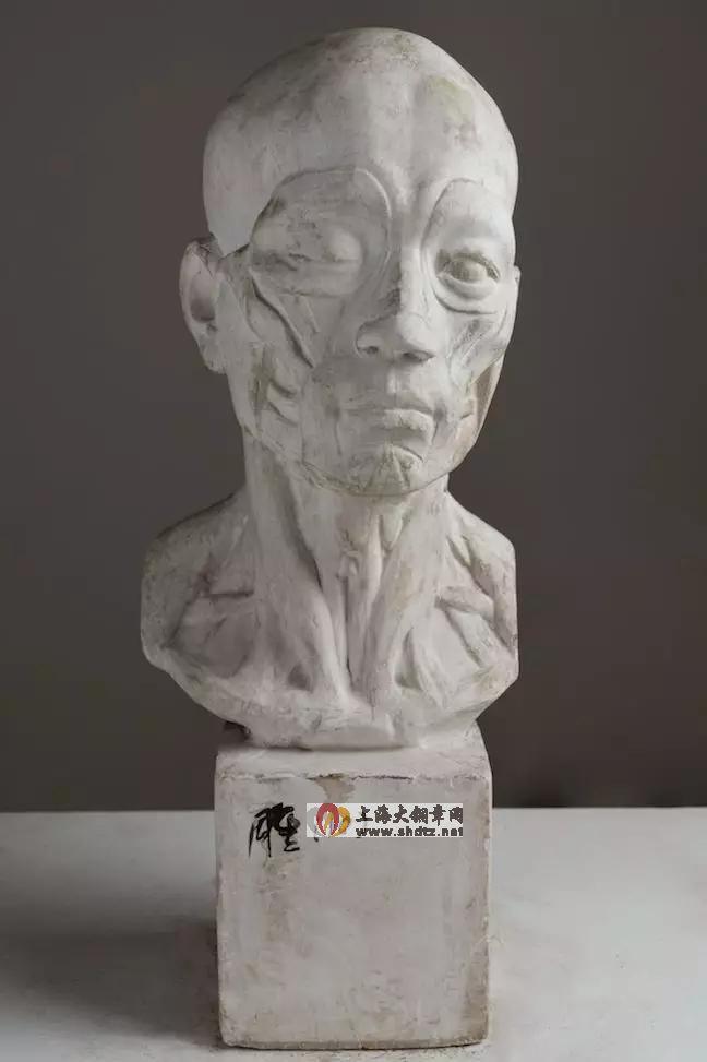 解剖头像 / 叶庆文 /  56 × 23 × 23 cm / 石膏 / 1953